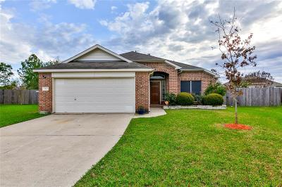 Deer Park Single Family Home For Sale: 2402 Comal Drive