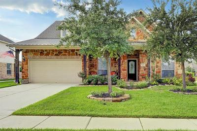 Tomball Single Family Home For Sale: 9602 Tangler Court