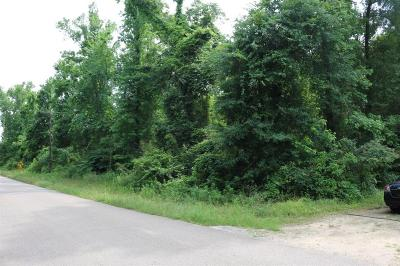 Conroe Residential Lots & Land For Sale: 14636 Tommy Smith Rd