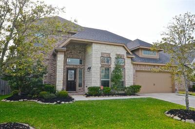 Rosenberg Single Family Home For Sale: 9426 Wheatfield Lane