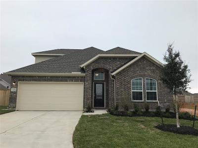 Texas City Single Family Home For Sale: 12618 Helms Bend Lane