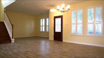 Sugar Land Single Family Home For Sale: 3019 Park Springs Lane Lane