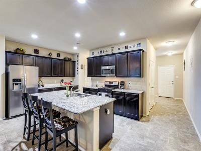 Montgomery County Single Family Home For Sale: 155 Meadow Mill Drive