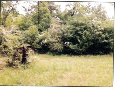 Tomball Residential Lots & Land For Sale: Holly Drive