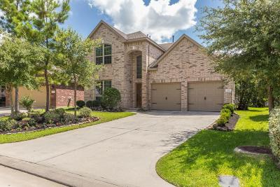 Spring Single Family Home For Sale: 91 Sagamore Ridge Place