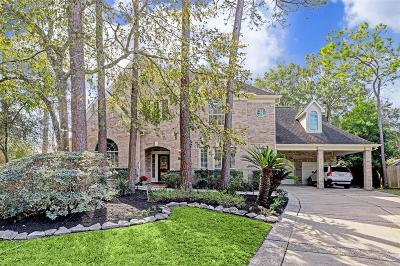 Houston Single Family Home For Sale: 930 Chinquapin Place