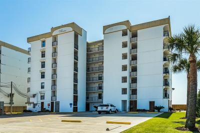 Galveston Mid/High-Rise For Sale: 11949 San Luis Pass Road #101