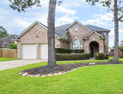Houston Single Family Home For Sale: 15530 Valley Creek Drive