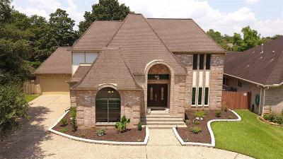 Sugar Land Single Family Home For Sale: 3203 Deer Creek Drive