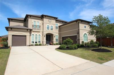 Cypress Single Family Home For Sale: 10602 Grace Hollow Drive