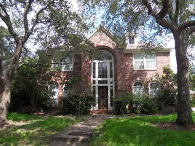 Houston Single Family Home For Sale: 4311 Village Corner Drive