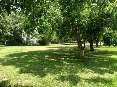 Katy Residential Lots & Land For Sale: 26411 Westheimer Parkway