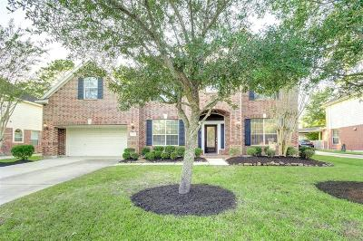 Eagle Springs Single Family Home For Sale: 18523 N Roaring River Court