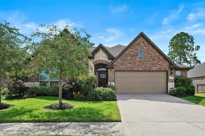 Houston Single Family Home For Sale: 13402 Lake Chesdin Road