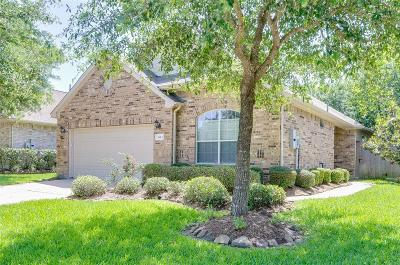 Pearland Single Family Home For Sale: 2413 Ameno Drive