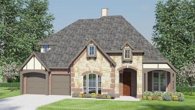 Conroe Single Family Home For Sale: 6003 Climbing Brendan Circle
