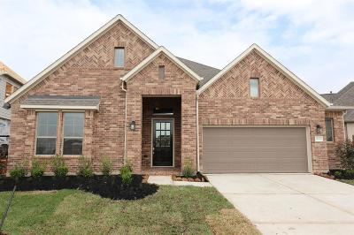 Tomball Single Family Home For Sale: 21823 Albertine Street