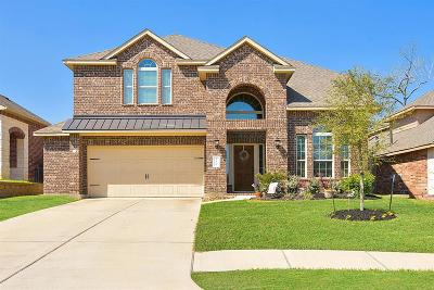 Conroe Single Family Home For Sale: 236 Dove Meadow Drive