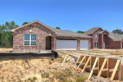 New Caney Single Family Home For Sale: 423 Seabiscuit Boulevard