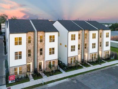 Houston Single Family Home For Sale: 704 Clark Street