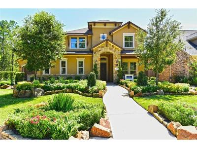 Spring Single Family Home For Sale: 31218 Maple Park Lane