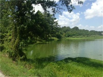 Humble Residential Lots & Land For Sale: Lakelane Drive