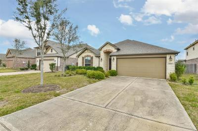 Pearland Single Family Home For Sale: 1504 Tyler Point Lane