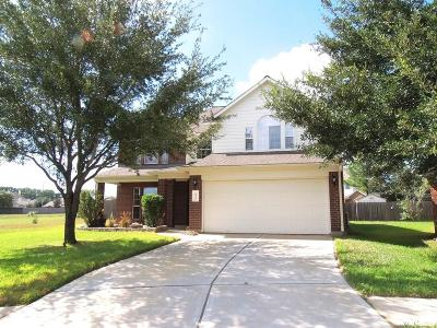Tomball Single Family Home For Sale: 9722 Gold Rush Springs Drive