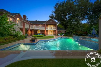 Houston Single Family Home For Sale: 9202 Roy Bean Drive
