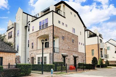 Houston Single Family Home For Sale: 9602 Fannin Station E
