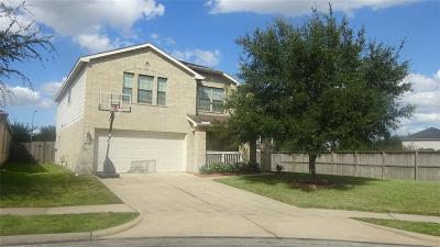 Sugar Land Single Family Home For Sale: 9402 Coatsworth Drive