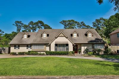 Houston Single Family Home For Sale: 6235 Rolling Water Drive