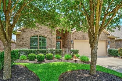 Kemah Single Family Home For Sale: 419 Holly Branch Lane