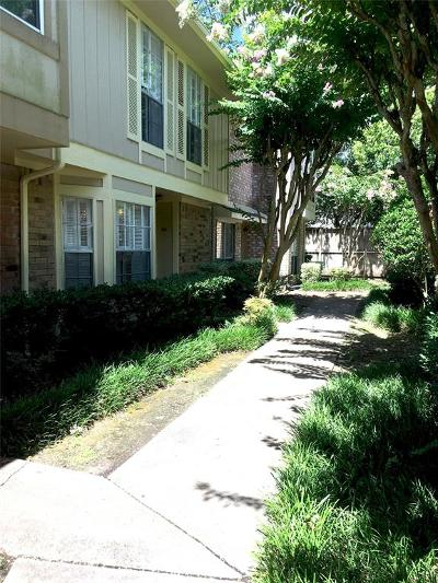Houston Condo/Townhouse For Sale: 727 Bunker Hill Road #60