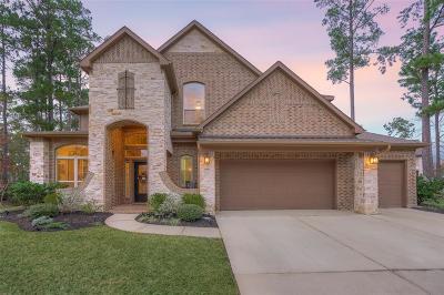 Montgomery Single Family Home For Sale: 8 Camden Oaks Lane