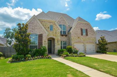 Riverstone Single Family Home For Sale: 4214 Pebble Heights Lane
