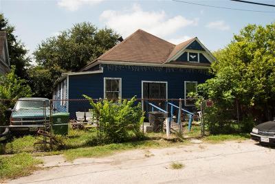 Houston Single Family Home For Sale: 1717 Weber Street