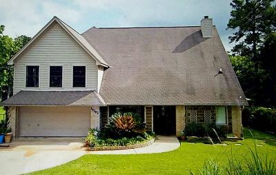 Conroe Single Family Home For Sale: 13392 Southshore Drive