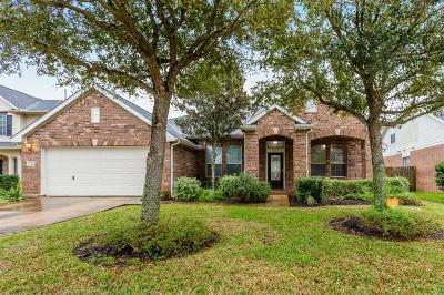 Rosenberg Single Family Home For Sale: 723 Arlington Lane