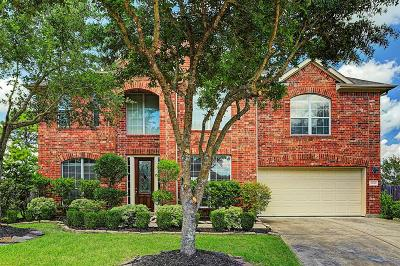 Pearland Single Family Home For Sale: 13501 Briar Rose Drive