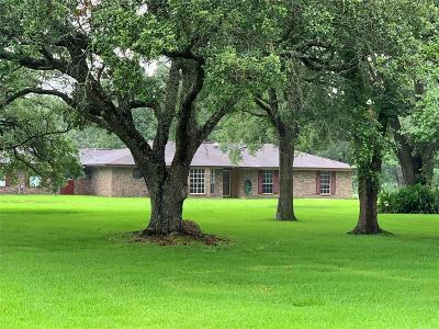 Alvin Single Family Home For Sale: 3412 County Road 155