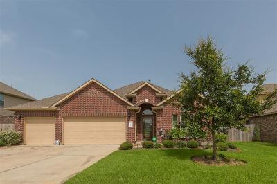 Harris County Single Family Home For Sale: 2310 Eagle Lane