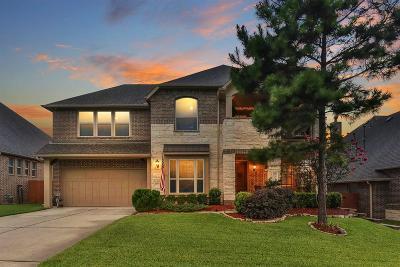 Conroe Single Family Home For Sale: 112 Owen Ridge Drive