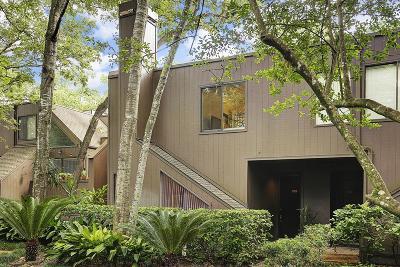 Houston Condo/Townhouse For Sale: 235 Litchfield Lane #94