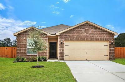 Houston Single Family Home For Sale: 10527 Pine Landing Drive