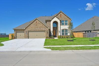 Rosharon Single Family Home For Sale: 13719 Village Glen Lane