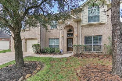 Houston Single Family Home For Sale: 16810 Morris Hill Lane
