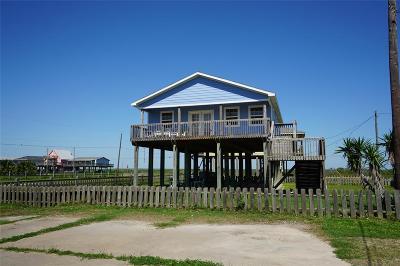 Surfside Beach Single Family Home For Sale: 105 Stanek Drive