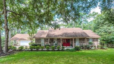 Hockley Single Family Home For Sale: 22015 Three Pines Drive