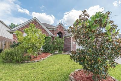 Conroe Single Family Home For Sale: 9930 Wing Street